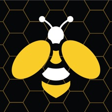 Activities of Honey Hive Game