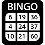 Bingo Caller Fun
