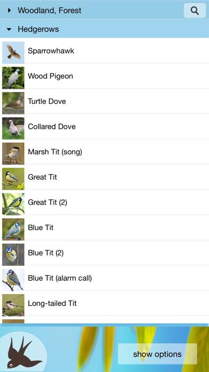 Chirp! Bird Songs UK & Europe screenshot-3
