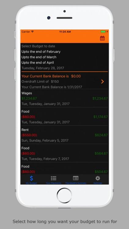 Budget Planner Pro screenshot-3