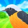 鳥コンボ! - iPhoneアプリ