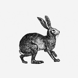 The Hare Linslade