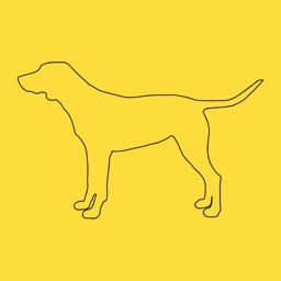 DogYears - A Pet Age Converter