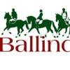 Ballindenisk