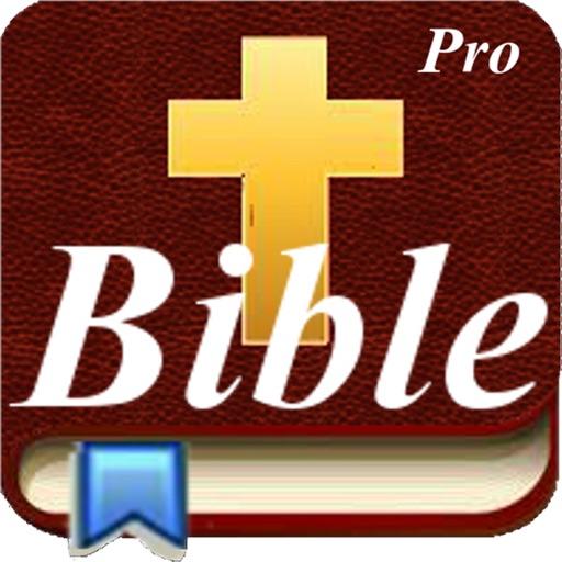 Handy Bible Pro