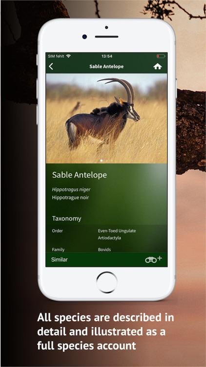 The Golden Safari Guide screenshot-3