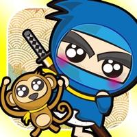 Codes for Ninja PUPU Hack