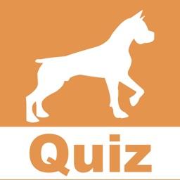The dog quiz HD
