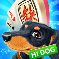 哈狗游戏-要打牌上哈狗HD free Resources hack