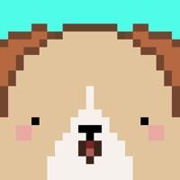 Codes for Pix! - Virtual Pet Widget Game Hack