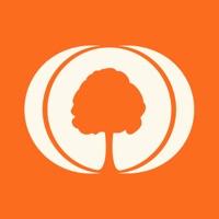 MyHeritage Family tree