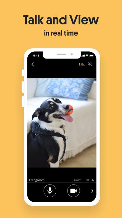 Alfred Home Security Camera Screenshot
