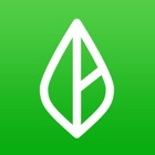 Branch: Schedule & Get Paid icon