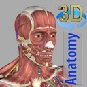 icone 3D Anatomy