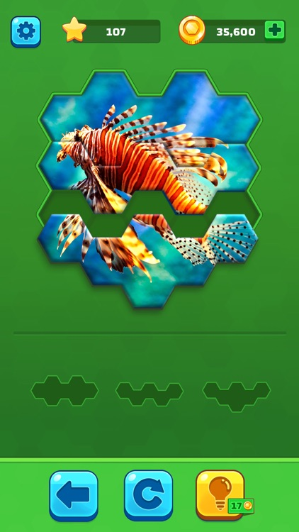 Hexa Jigsaw Puzzle ® screenshot-2