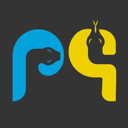 Learn Python Programming Guide