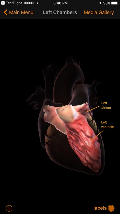 CardioSmart Heart Explorer screenshot-4