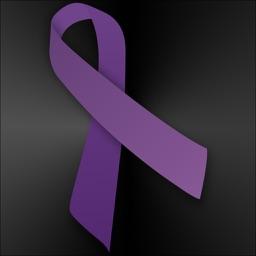 Domestic Violence Information