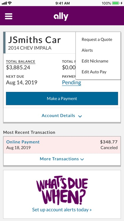 Ally Auto Mobile Pay screenshot-5