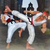 Karate Kings Fight 20