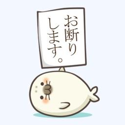 Cute Baby Harbor seal !!