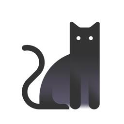 一日猫 - 猫咪社区 ‧吸猫‧猫奴必备