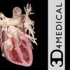 Heart Pro III iPad