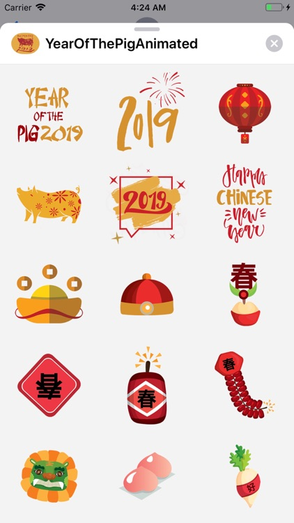 Year of the Pig 2019! 新年快乐