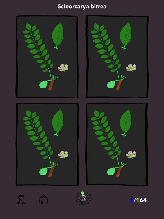 The Tree Seasonsのおすすめ画像4