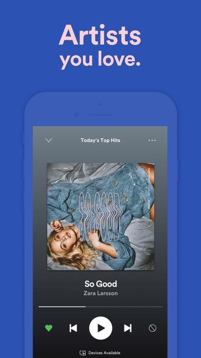 Spotify review screenshots