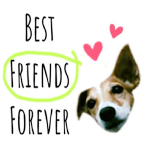 Talking Jack Russell Dog Emoji