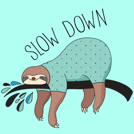 Cute Slow Down Sloth
