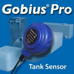 Gobius Pro