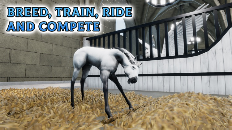 Horse Academy screenshot-5