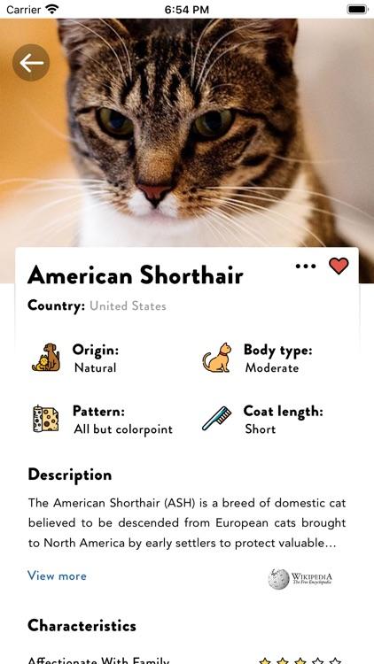 Cats Pedia: Breed identifier