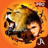 Codes for 4x4 Safari: I-Pro Hack