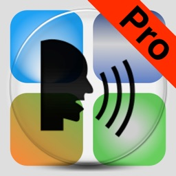Dictate Pro - Speech to text