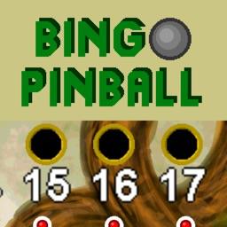 Bingo Pinball Dragon