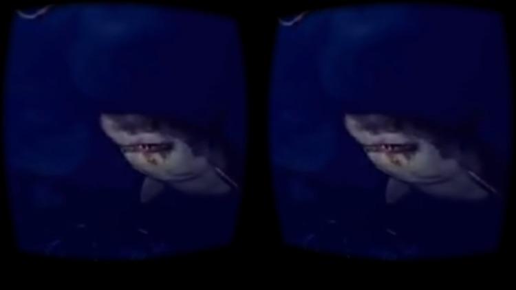 VR Movies : 2D 3D 360° Video screenshot-3
