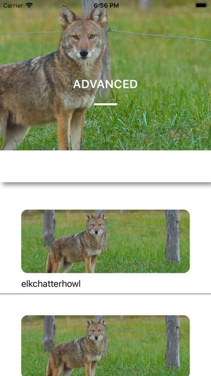 Coyote Calls - Hunting Sounds screenshot-4