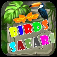Birds Safari