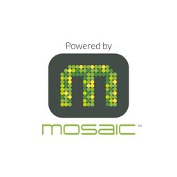 MOSAIC 365