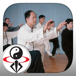 TaiChi 108 Yang Classical Form