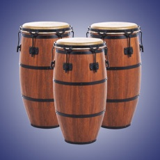 Activities of Real Percussion