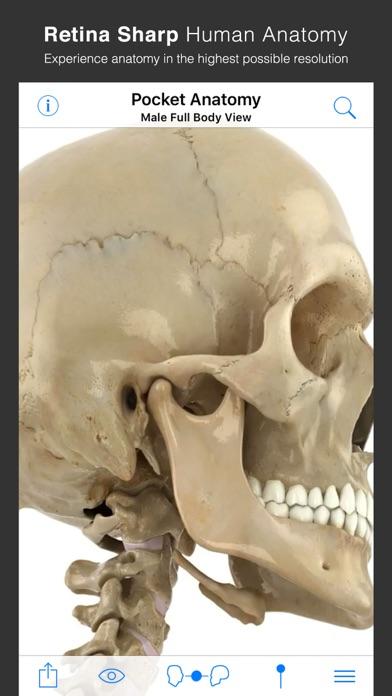 Pocket Anatomy.のスクリーンショット