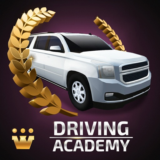 Driving Academy 2019 Simulator
