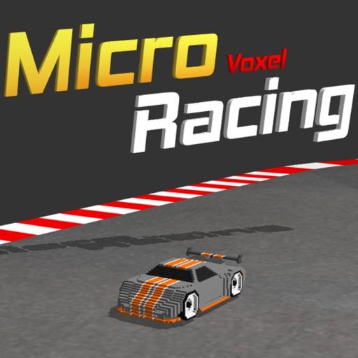 Micro Voxel Racing
