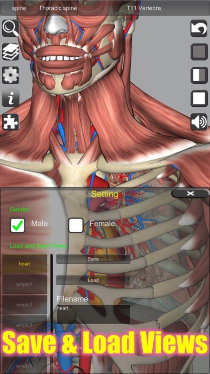 3D Anatomy screenshot-3