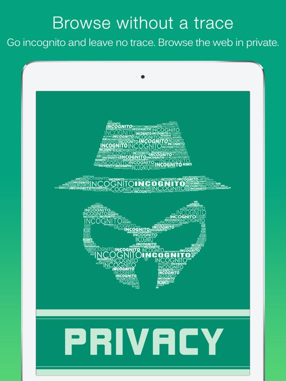 Dolphin Web Browser for iPad iPad app afbeelding 4