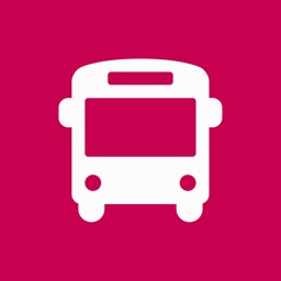SF Muni Buses
